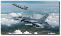 Lightning Strike & Viper Venom by Darrell White (F-16 / F-35)