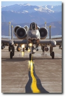 Loaded for Bear by Thierry Thompson (A-10 Warthog)