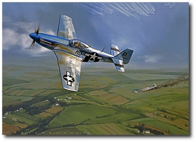 Mustang Ace by Jack Fellows (P-51)