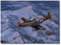 Mustang! - The Checkertail Clan by Jack Fellows (P-51)