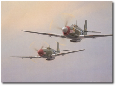 No Quarry Today by Domenic DeNardo (P-51 Mustang)