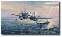 No Room for Error by Philip West (Seafire TM379)