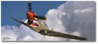 P-40 Warhawk by Larry McManus