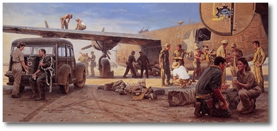 Ploesti: The Odyssey of Utah Man by Gil Cohen (B-24 Liberator)