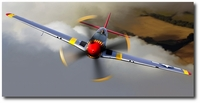 Red Tail Devil by Thierry Thompson (P-51 Mustang - Tuskegee)