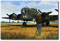 Reunion by David Gray (B-17)