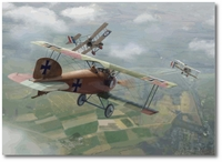 Richthofen Downs Lanoe Hawker by Jim Laurier (Albatros D.I)