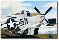 Shining Stallion by Sam Lyons (P-51 Mustang)
