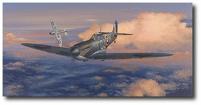 Spitfires - Masters of the Air by Philip West