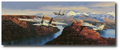 Taking the Scenic Tour by Rick Herter (F-14)