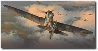 Tally Ho by Philip West (Spitfire)