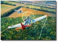 The Color of Courage by Rick Herter (P-51 Mustang)