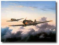 The Count by David Poole (Me-109)