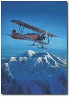The Great Ones by John Hume (Stearman C-3B)