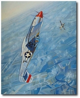 The Kidd by Troy White (P-51 Mustang)