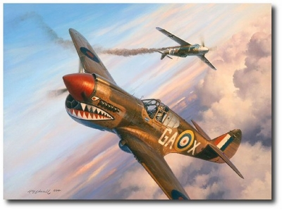 The Long Shot by Roy Grinnell (P-40 Warhawk)