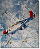 The Shepherd by Troy White (P-51 Mustang - Tuskegee)