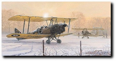 Those Were the Days by Philip West (DeHavilland Tiger Moth)