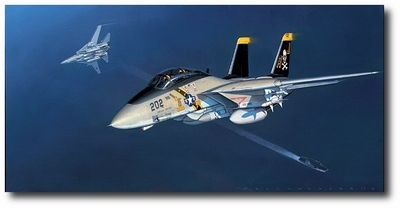Tomcat by Jack Fellows (F-14)