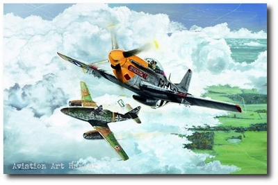 Two for Drew by Brian Bateman (P-51 & Me-262)