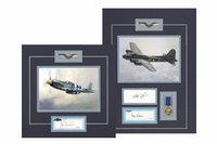 USAAF Fighter Pilots Collection