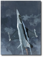 Viper by K. Price Randel (F-16 Falcon)