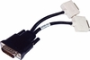 Dell DMS-59 to Dual DVI Y-Splitter Cable H9361