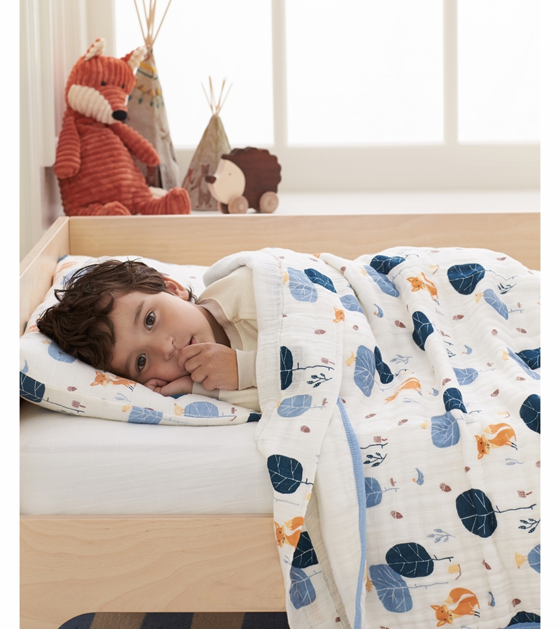 aden anais organic toddler bedding set into the woods foxy. Black Bedroom Furniture Sets. Home Design Ideas