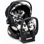 Britax Chaperone Infant Car Seat 2009 Cowmooflage