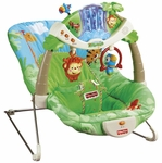 Fisher-Price Rain Forest Bouncer