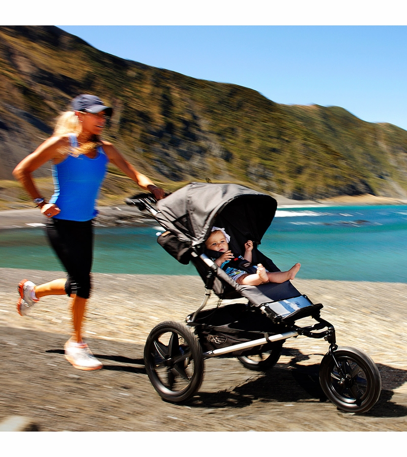 Mountain Buggy Terrain Stroller Flint