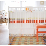New Arrivals Sundance 3 Piece Baby Crib Bedding Set
