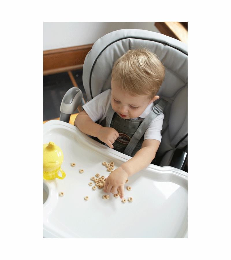 Peg perego prima pappa best high chair consumer reports for Housse chaise haute peg perego prima pappa diner