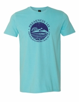 Distressed Seal T-Shirt Pool Blue