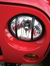 Headlight Euro Guards Wrangler JK 2007-2017 in Black by Rampage