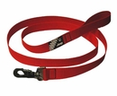 Jeep-Brand Dog Leash for Jeep Dogs