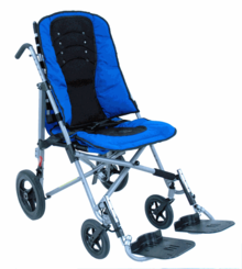 Adult Strollers/ Wheelchairs