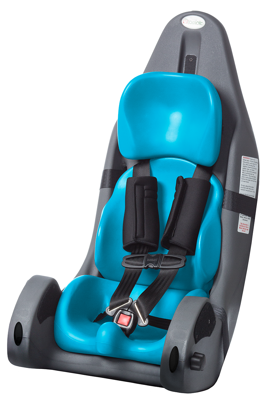 Girl Convertible Car Seat