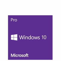 Microsoft Windows 10 Professional FQC-08970 - 32Bit 1-Pack English DVD Brown Box (OEM)