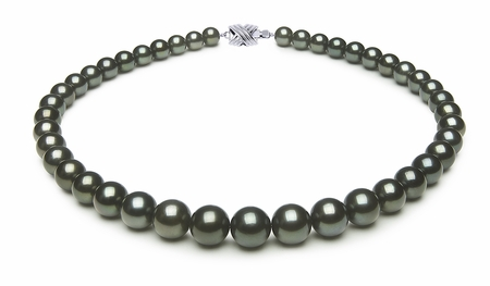 8.4 x 11.8mm Black Green Tahitian Pearl Necklace