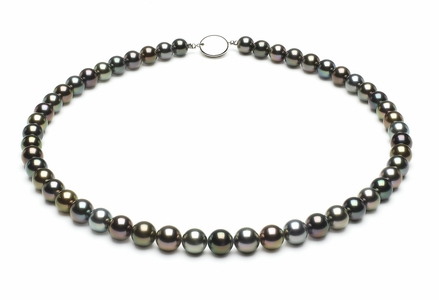 Tahitian Pearl Necklace Serial Number | 7-3mmto8-6mm-tahitian-south-sea-multi-color-pearl-necklace-aaa-16inch-s5-xr05138m-b99