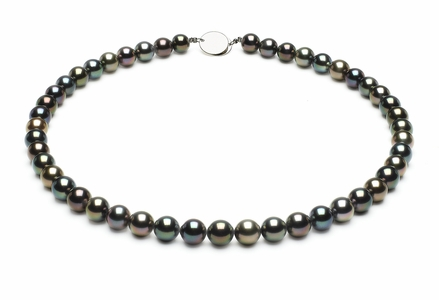 Tahitian Pearl Necklace Serial Number | 8mmto8-9mm-tahitian-south-sea-multi-color-pearl-necklace-aaa-16inch-s5-xr06949m-b98
