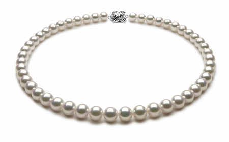 TRUE AAA Quality 8 x 8.5mm White Akoya Cultured Pearl Necklace