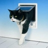 Ani Mate Door Cat Electro White
