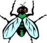 <B>FLY/ Bug Repellents for Premise control</B>