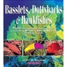 Reef Fishes Volume 2 - Basslets