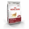 Royal Canin Feline Health Nutrition Adult Fit 32 Dry Cat Food 3.5 Lb Bag