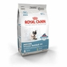 Royal Canin Feline Health Nutrition Indoor Intense Hairball 34 Dry Cat Food 15 Lb Bag