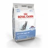 Royal Canin Feline Health Nutrition Indoor Light 40 Dry Cat Food 3 Lb Bag