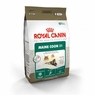 Royal Canin Feline Health Nutrition Maine Coon 31 Formula Dry Cat Food 6 Lb Bag